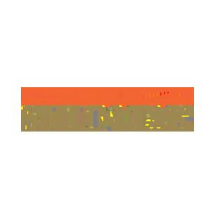 Shun Tak